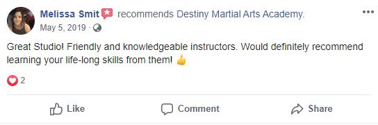 Adult 2, Destiny Martial Arts Academy