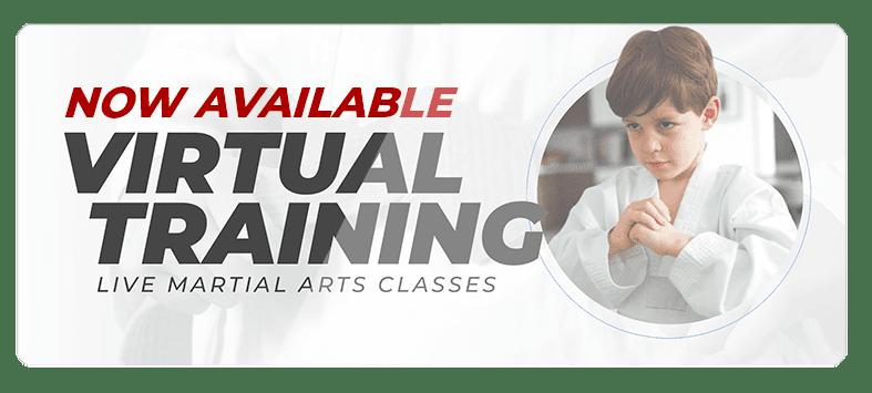 VIRTUALPOPUPSPARK.1.1, Destiny Martial Arts Academy